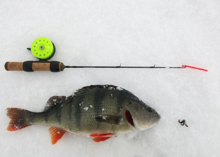 Рыбалка зима окунь на балду