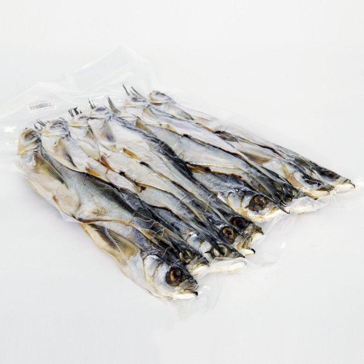 Рыба чехонь - все самое важное для рыбалки