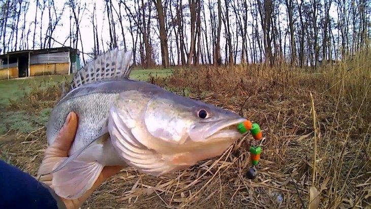 Рыбалка в краснодарском крае поздней осенью