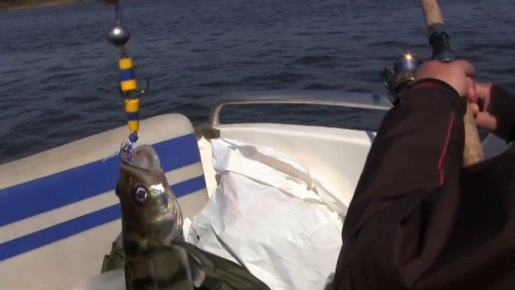 Ловля на пенопласт - 80 фото способов применения пенопласта для ловли рыбы