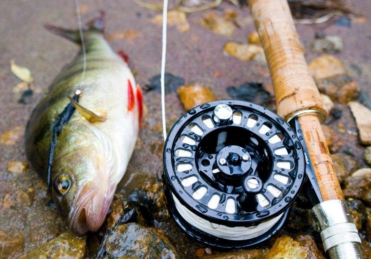 Рыбалка с элементами нахлыста