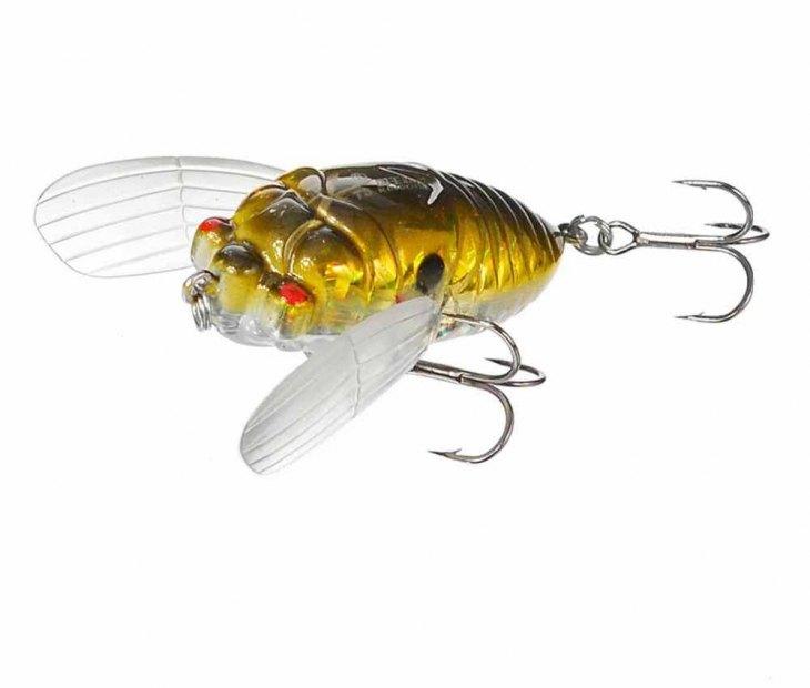 Как ловить на блесну цикада (как выглядит цикада, ее форма, размер, цвета)