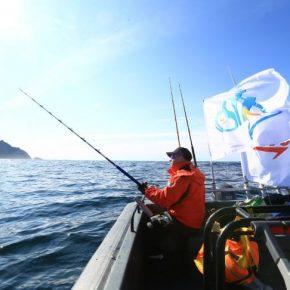 Снасти для морской рыбалки: советы экспертов, особенности выбора и применения лучших снастей (85 фото + видео)