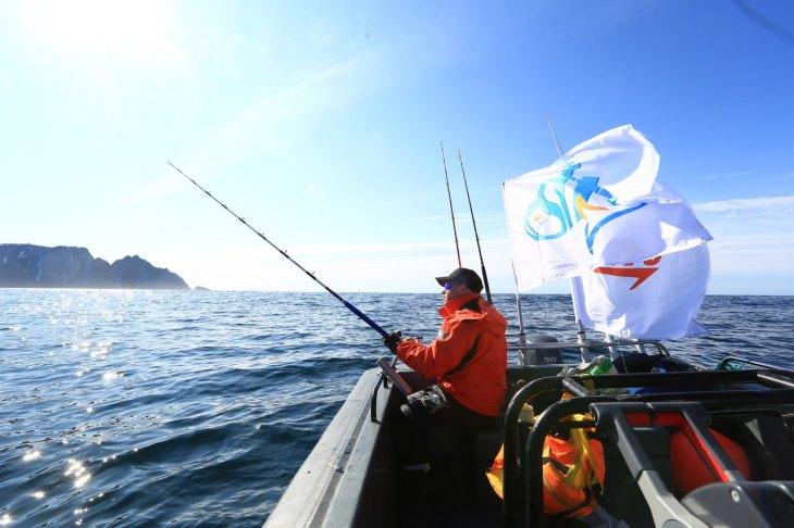 Классификации крючков - 80 фото как правильно выбрать крючок для ловли рыбы