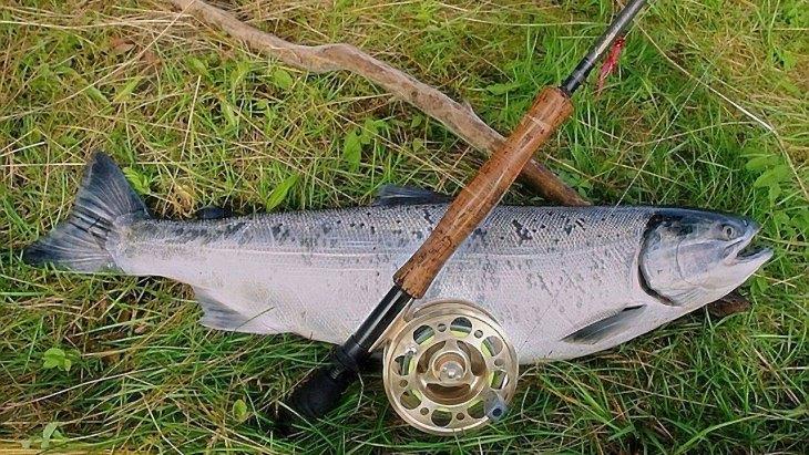 Рыбалка на жерлицы летом